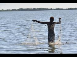 Richie Cardener, a fisherman, cast his net in the waters in Hellshire, St Catherine.